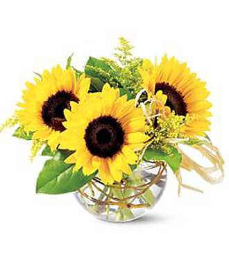 The Art and Style of Sunflowers