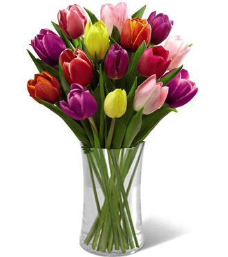 Colorful spring tulips in a vase with pink tulips, yellow tulips, red tulips & orange tulips in Grand Rapids, Sunnyslope Floral