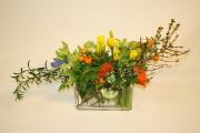 Dutch Blooms