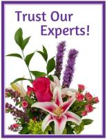 Designers Choice - Trust Our Experts