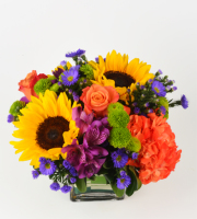 August Arrangement of the Month