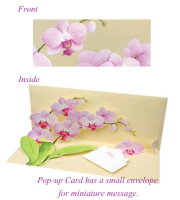 Orchids Pop-up Card