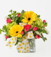 Emoji Collection - Big Flirt