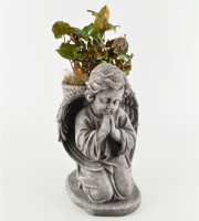 Angel With Green Plant