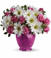 Pink Daisy Delight