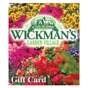 wickmans gift card 50