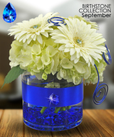 Midwood's September Birthstone Collection