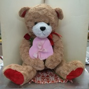 Teddy &  Chocolate