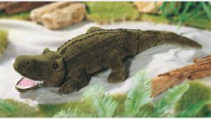 Allie G - Alligator
