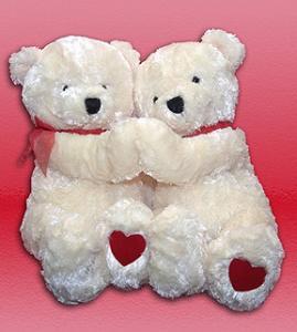 Double Date Bears