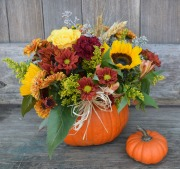 Bayport's Best - HELLO AUTUMN!