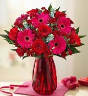 Valentine's Day Rose & Gerbera Daisy