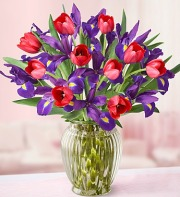 Hugs & Kisses Tulip & Iris Bouquet
