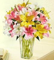 Spring Pink, Yellow and White Lilies