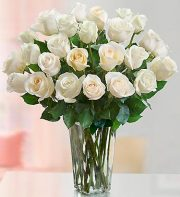 Passion for White Roses