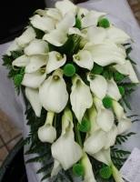 Cascading Calla Lilies Bqt