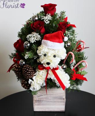 Santa\'s Helper
