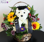 Graduation Puppy Basket