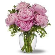 Peonies en rose