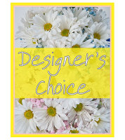 Designers Choice - New Baby