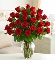 2 Dozen Elegant Roses