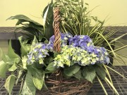 Blooming & Green Plants in a Basket