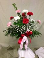 Aletha's Carnation Splendor