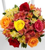 Fall Blooms - No Vase