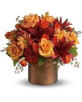 Amazing Autumn Roses