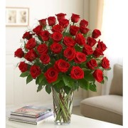 Two Dozen Long-Stemmed Red Roses