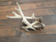 Antler Wine Holder
