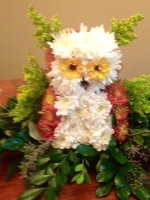 Elly's owl