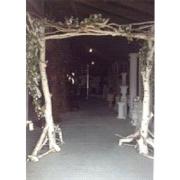 Natural Birch Arch
