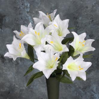 B2 -Easter Silk Bush