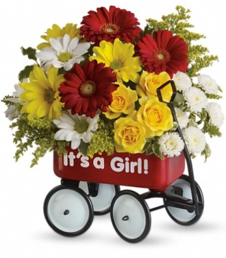 Baby\'s Wow Wagon by Teleflora - Girl