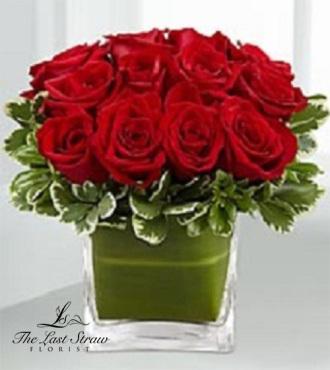 My Valentine TLS-115