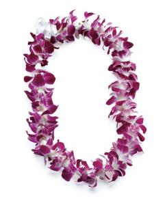 Dendrobian Orchid Lei  Purple