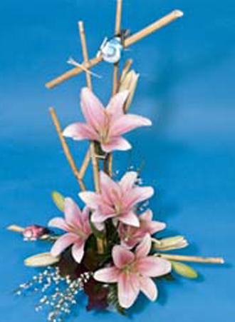 FD® Backyard Lily