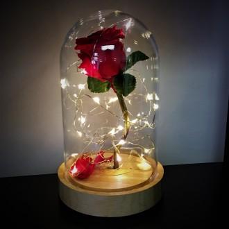 Bella Rose Beauty