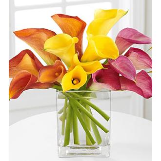 Color My World, calla lilies, anniversary, wedding centerpieces