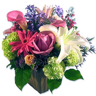 Parisian Flair, gerberas, callas, viburnum, roses, lilies, birthday