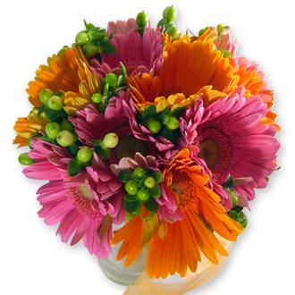Radiant Charm, daisies, hypericum, bridal bouquet