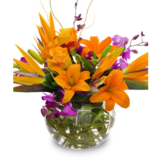 Touch of Paradise, lilies, birds of paradise, orchids, roses, thanksgiving