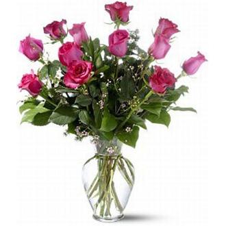 Dozen Colored Roses, housewarming, roses