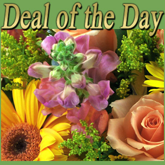 Deal of the Day, thinking of you, birthday, anniversary, housewarming, congratulations, friendship, thank you, get well