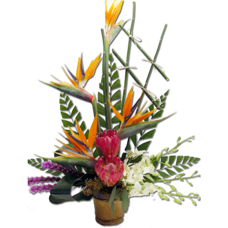 Exotic Paradise, protea, birds of paradise, liatris, orchids, tropical