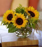 Sassy Sunflowers