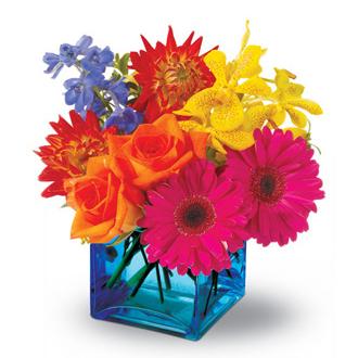 Calypso, daisies, delphinium, roses, centerpieces