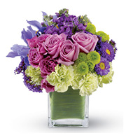 Mad About You, roses, iris, asters, anniversary