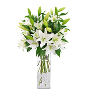 Winter White Lilies Christmas